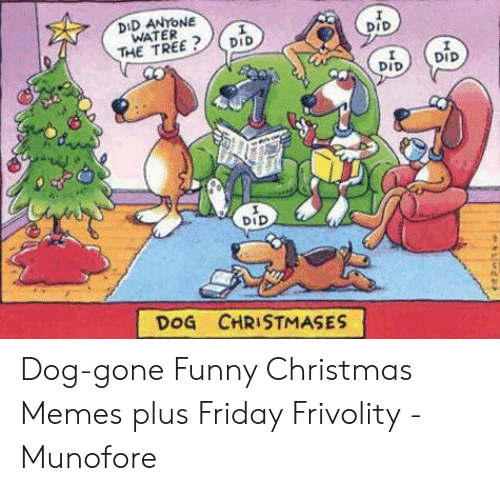 Christmas, Friday, and Funny: DID ANYONE  WATER  THE TREE  DID  DID  DID  DID  DoG CHRISTMASES Dog-gone Funny Christmas Memes plus Friday Frivolity - Munofore