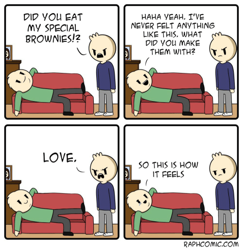 Love, Never, and Haha: DID YOu EAT  My SPECIAL  BROWNIES!?  HAHA VEAH. I'VE  NEVER FELT ANYTHING  LIKE THIS, WHAT  DID YoU MAKE  THEM WITH? T1  LOVE,  SO THIS IS HOW  IT FEELS  RAPHCOmiC.COM