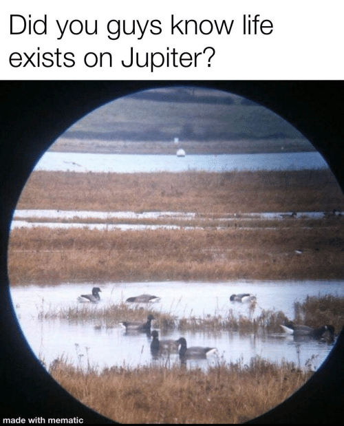 Life, Jupiter, and Did: Did you guys know life  exists on Jupiter?  made with mematic