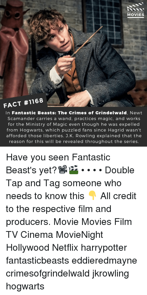 Memes, Movies, and Netflix: DID YOU KNOW  MOVIES  FACT #1168  In Fantastic Beasts: The Crimes of Grindelwald, Newt  Scamander carries a wand, practices magic, and works  for the Ministry of Magic even though he was expelled  from Hogwarts, which puzzled fans since Hagrid wasn't  afforded those liberties. J.K. Rowling explained that the  reason for this will be revealed throughout the series Have you seen Fantastic Beast's yet?📽️🎬 • • • • Double Tap and Tag someone who needs to know this 👇 All credit to the respective film and producers. Movie Movies Film TV Cinema MovieNight Hollywood Netflix harrypotter fantasticbeasts eddieredmayne crimesofgrindelwald jkrowling hogwarts