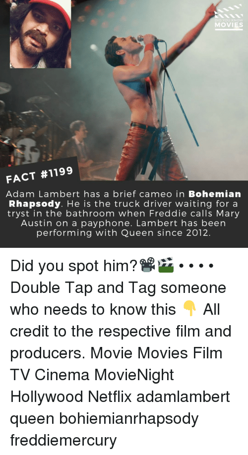 Memes, Movies, and Netflix: DID YOU KNow  MOVIES  FACT #1199  Adam Lambert has a brief cameo in Bohemian  Rhapsody. He is the truck driver waiting for a  tryst in the bathroom when Freddie calls Mary  Austin on a payphone. Lambert has been  performing with Queen since 2012. Did you spot him?📽️🎬 • • • • Double Tap and Tag someone who needs to know this 👇 All credit to the respective film and producers. Movie Movies Film TV Cinema MovieNight Hollywood Netflix adamlambert queen bohiemianrhapsody freddiemercury