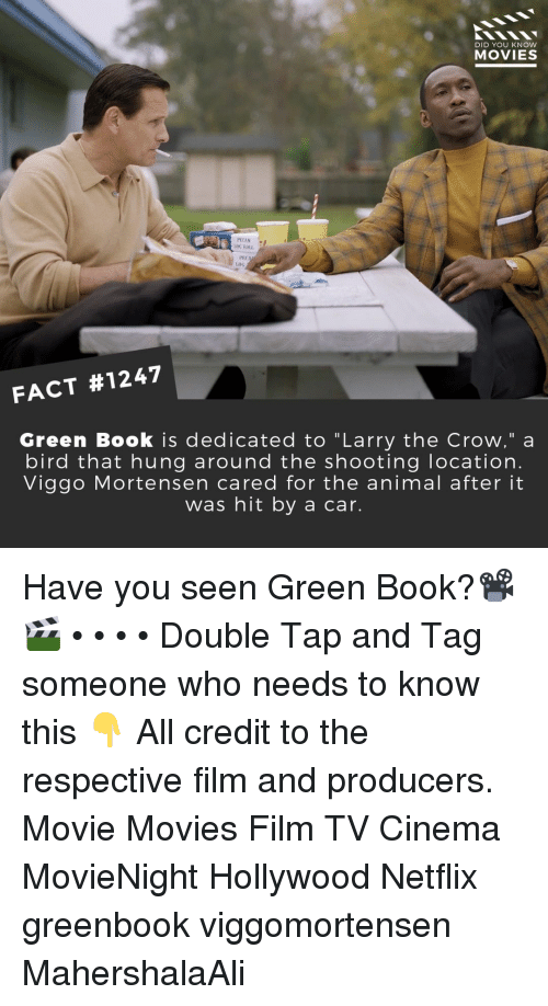 """Memes, Movies, and Netflix: DID YOU KNOW  MOVIES  G ROLL  PEC  Loo  FACT #1247  Green Book is dedicated to """"Larry the Crow,"""" a  bird that hung around the shooting location.  Viggo Mortensen cared for the animal after it  was hit by a car. Have you seen Green Book?📽️🎬 • • • • Double Tap and Tag someone who needs to know this 👇 All credit to the respective film and producers. Movie Movies Film TV Cinema MovieNight Hollywood Netflix greenbook viggomortensen MahershalaAli"""