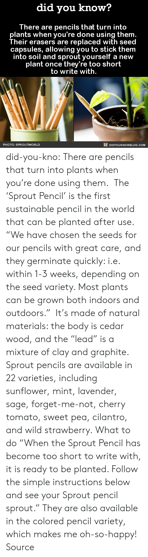 """Gif, Tumblr, and Blog: did you know?  There are pencils that turn into  plants when you're done using them  Their erasers are replaced with seed  capsules, allowing you to stick them  into soil and sprout yourself a new  plant once they're too short  to write with.  PHOTO: SPROUTWORLD  DIDYOUKNOWBLOG.COM did-you-kno:  There are pencils that turn into  plants when you're done using them.   The 'Sprout Pencil' is the first sustainable pencil in the world that can be planted after use.   """"We have chosen the seeds for our pencils with great care, and they germinate quickly: i.e. within 1-3 weeks, depending on the seed variety. Most plants can be grown both indoors and outdoors."""" It's made of natural materials: the body is cedar wood, and the """"lead"""" is a mixture of clay and graphite. Sprout pencils are available in 22 varieties, including sunflower, mint, lavender, sage, forget-me-not, cherry tomato, sweet pea, cilantro, and wild strawberry. What to do """"When the Sprout Pencil has become too short to write with, it is ready to be planted. Follow the simple instructions below and see your Sprout pencil sprout."""" They are also available in the colored pencil variety, which makes me oh-so-happy! Source"""