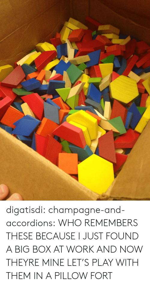 Digatisdi Champagne-And-Accordions WHO REMEMBERS THESE