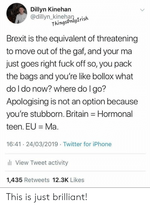 Iphone, Memes, and Twitter: Dillyn Kinehan  @dillyn_kinehanlrish  ThingsonlyIrish  Brexit is the equivalent of threatening  to move out of the gaf, and your ma  just goes right fuck off so, you pack  the bags and you're like bollox what  do l do noW? where do l go?  Apologising is not an option because  you're stubborn. Britain Hormonal  teen. EUMa  16:41 24/03/2019 Twitter for iPhone  l View Tweet activity  1,435 Retweets 12.3K Likes This is just brilliant!
