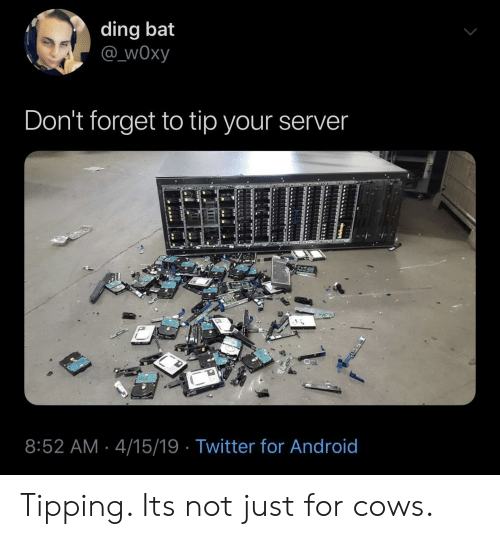 Android, Twitter, and Bat: ding bat  @ wOxy  Don't forget to tip your server  8:52 AM 4/15/19 Twitter for Android Tipping. Its not just for cows.