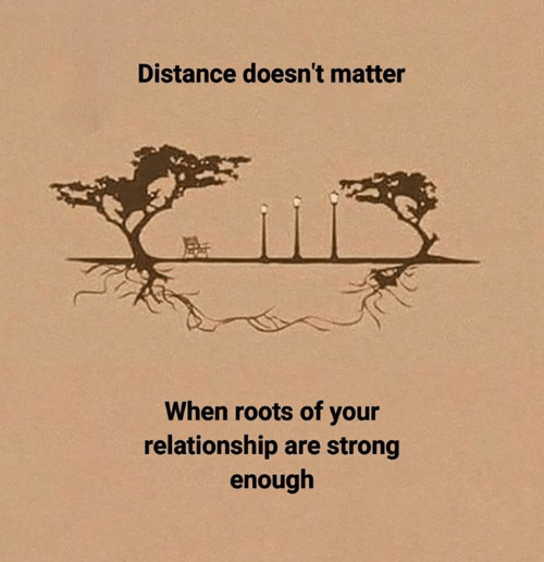 Strong, Roots, and Relationship: Distance doesn't matter  When roots of your  relationship are strong  enough
