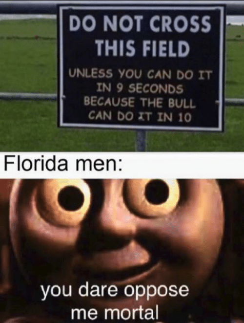 Cross, Florida, and Can: DO NOT CROSS  THIS FIELD  UNLESS YOU CAN DO IT  IN 9 SECONDS  BECAUSE THE BULL  CAN DO XT IN 10  Florida men:  you dare oppose  me mortal