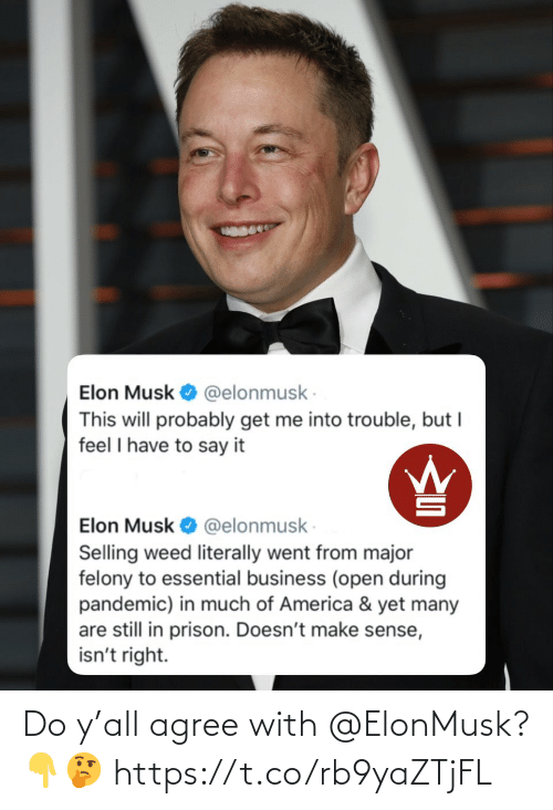 Ÿ˜˜: Do y'all agree with @ElonMusk? 👇🤔 https://t.co/rb9yaZTjFL