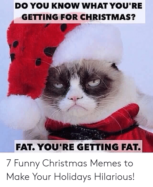 Christmas, Funny, and Memes: DO YOU KNOW WHAT YOU'RE  GETTING FOR CHRISTMAS?  FAT. YOU'RE GETTING FAT. 7 Funny Christmas Memes to Make Your Holidays Hilarious!