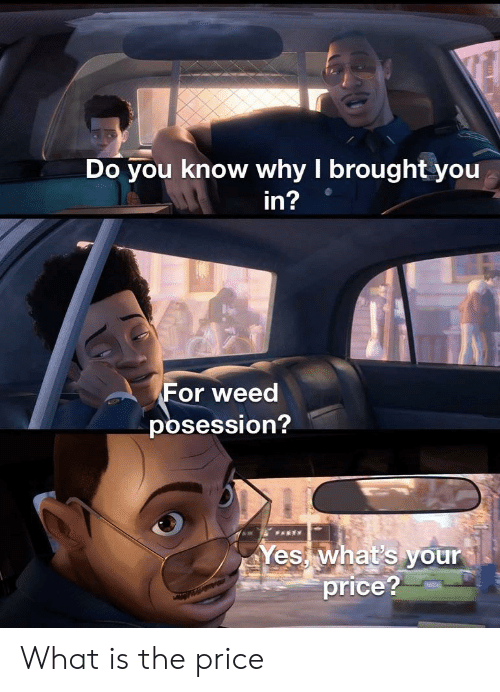 Funny, Weed, and What Is: Do you know why I brought you  in?  For weed  posession?  FARTY  A N  Yes what's your  price? What is the price
