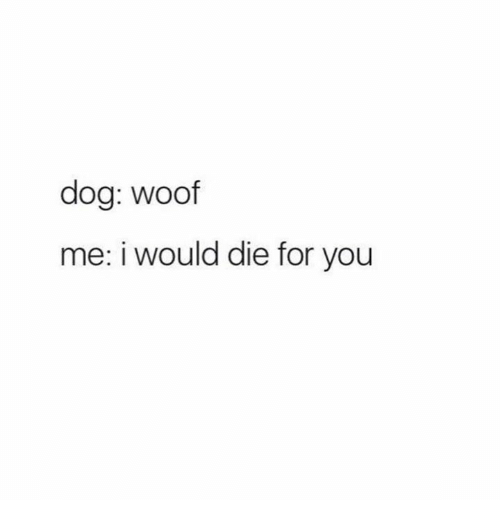 woofing: dog: woof  me: i would die for you