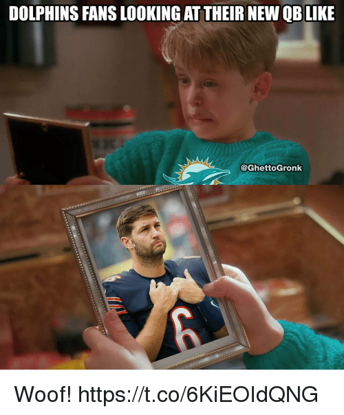 woofing: DOLPHINS FANS LOOKING AT THEIR NEW QBLIKE  @GhettoGronk Woof! https://t.co/6KiEOIdQNG