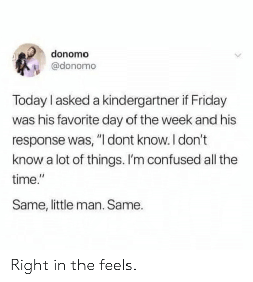 """Confused, Friday, and Time: donomo  @donomo  Today I asked a kindergartner if Friday  was his favorite day of the week and his  response was, """"I dont know. I don't  know a lot of things. I'm confused all the  time.""""  Same, little man. Same. Right in the feels."""