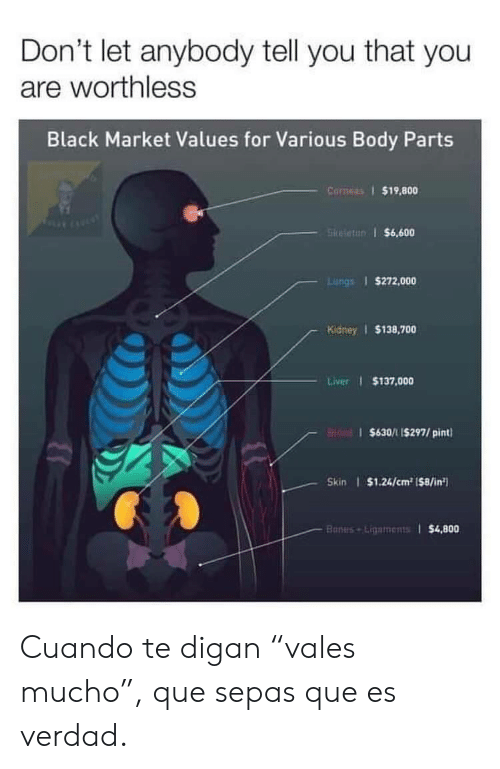 """Bones, Black, and Pint: Don't let anybody tell you that you  are worthless  Black Market Values for Various Body Parts  Corneas 1 $19,800  5kifettr) i $6,600  Lungs 1 $272,000  Kidney $138,700  Liver I $137,000  $630/1 I$297/ pint  Skin $1.24/cm2 1$8/in  $4,800  Bones Ligaments1 Cuando te digan""""vales mucho"""", que sepas que es verdad."""