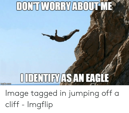 Jumping Off A Cliff Meme: DONT WORRY ABOUT ME  IIDENTIFY AS AN EAGLE  imgflip.com Image tagged in jumping off a cliff - Imgflip