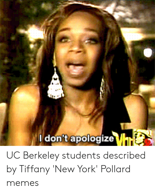 Don'tapologize UC Berkeley Students Described by Tiffany