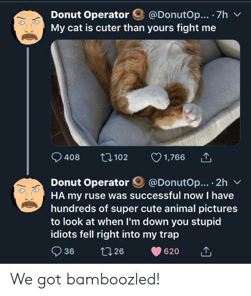Operator: @DonutOp... 7h  Donut Operator  My cat is cuter than yours fight me  1,766  t102  408  @DonutOp... 2h  Donut Operator  HA my ruse was successful now I have  hundreds of super cute animal pictures  to look at when I'm down you stupid  idiots fell right into my trap  36  t126  620 We got bamboozled!