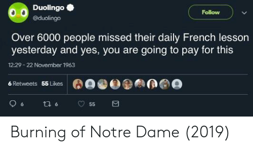 Notre Dame, French, and Yes: Duolingo  @duolingo  Follow  Over 6000 people missed their daily French lesson  yesterday and yes, you are going to pay for this  12:29- 22 November 1963  6 Retweets  55 Likes Burning of Notre Dame (2019)