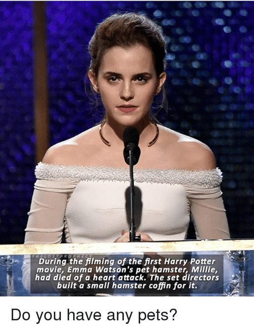 Dieded: During the filming of the first Harry Potter  movie, Emma Watson's pet hamster, Millie  had died of a heart attack. The set directors  built a small hamster coffin for it. Do you have any pets?