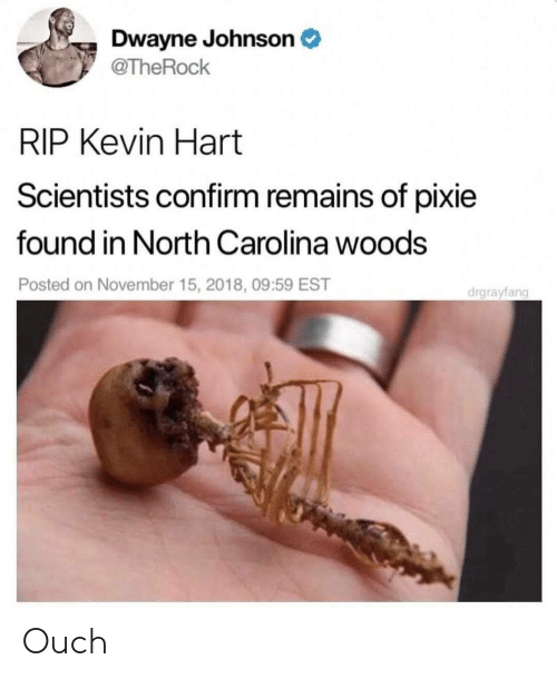 Kevin Hart: Dwayne Johnson  @TheRock  RIP Kevin Hart  Scientists confirm remains of pixie  found in North Carolina woods  Posted on November 15, 2018, 09:59 EST  drgrayfang Ouch
