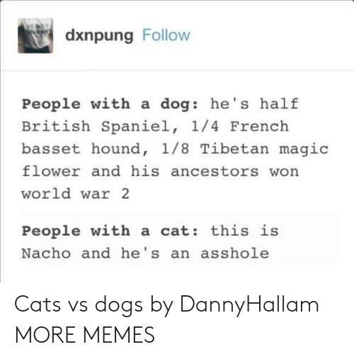 hound: dxnpung Follow  People with a dog: he's half  British Spaniel, 1/4 French  basset hound, 1/8 Tibetan magic  flower and his ancestors won  world war 2  People with a cat: this is  Nacho and he's an asshole Cats vs dogs by DannyHallam MORE MEMES