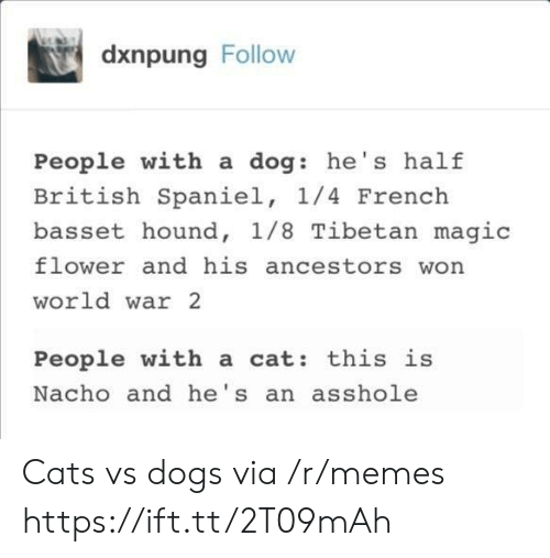 hound: dxnpung Follow  People with a dog: he's half  British Spaniel, 1/4 French  basset hound, 1/8 Tibetan magic  flower and his ancestors won  world war 2  People with a cat: this is  Nacho and he's an asshole Cats vs dogs via /r/memes https://ift.tt/2T09mAh