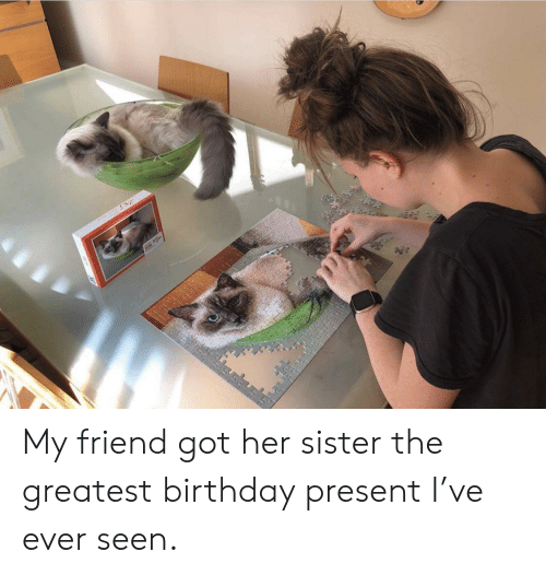 Birthday, Got, and Her: E My friend got her sister the greatest birthday present I've ever seen.