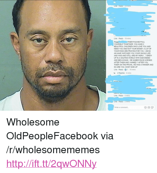 """oldpeoplefacebook: e Rep  Like Reply 19 mins  Pegg TIGER PLEASE PULL  YOURSELF TOGETHER. YOU HAVE 2  BEAUTIFUL CHILDREN WHO LOVE YOU AND  NEED YOU AND NOT YOUR MONEY. A LOT OF  YOUR FANS ARE PRAYING FOR YOU. I AM 84  AN HAVE WATCHED YOU YOUR WHOLE LIFE  AND WAS AND STILL ARE MY HERO. I GREW  UP IN A GOLFING WORLD WITH SAM SNEED  AND BEN HOGAN WE NAMED RACE HORSES  AFTER THEM AND INAMED 1 AFTER YOU  TIGER ON THE PROWL. HE WAS A WINNER AND  SO ARE YOU. DONT GIVE UP  Like Reply 1 16 mins  2 Replies . 4 mins  tn  rill he  Like Reply 5 mins  Reply 2 mins  Write a comment. <p>Wholesome OldPeopleFacebook via /r/wholesomememes <a href=""""http://ift.tt/2qwONNy"""">http://ift.tt/2qwONNy</a></p>"""