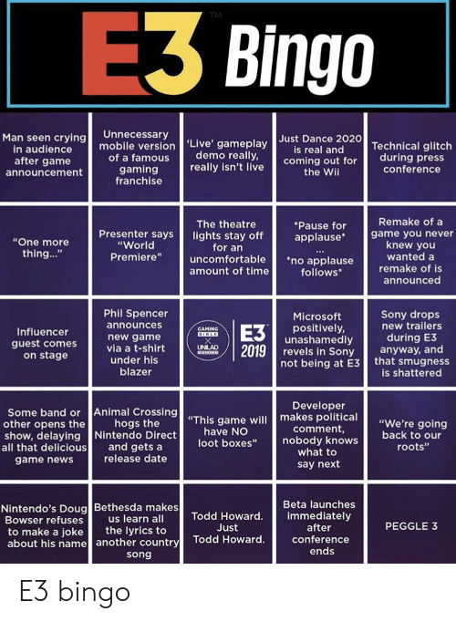 E3 Bingo TM Unnecessary Man Seen Crying in Audience After