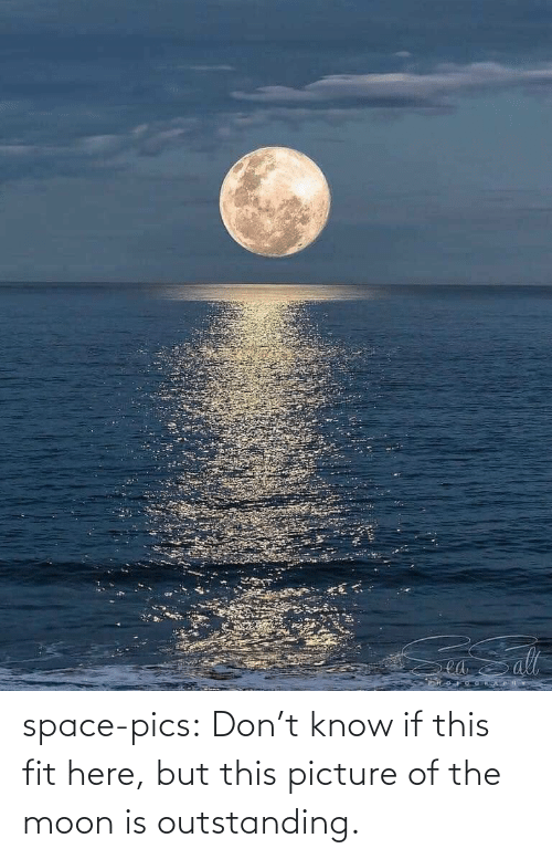 the moon: ea space-pics:  Don't know if this fit here, but this picture of the moon is outstanding.