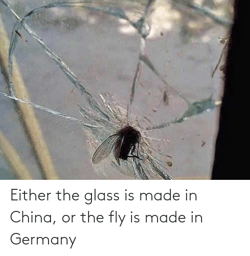 China: Either the glass is made in China, or the fly is made in Germany