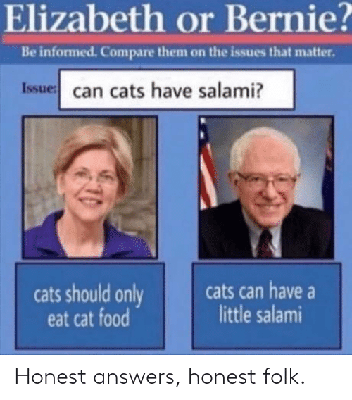 Bernie: Elizabeth or Bernie?  Be informed. Compare them on the issues that matter.  Issue can cats have salami?  cats can have  little salami  cats should only  eat cat food Honest answers, honest folk.