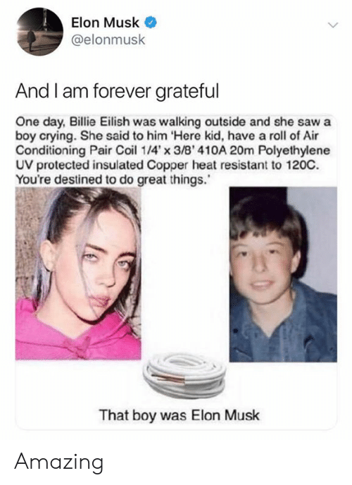 air conditioning: Elon Musk  @elonmusk  And I am forever grateful  One day, Billie Eilish was walking outside and she saw a  boy crying. She said to him Here kid, have a roll of Air  Conditioning Pair Coi 14'x 3/B' 410A 20m Polyethylene  UV protected insulated Copper heat resistant to 120C.  You're destined to do great things.  That boy was Elon Musk Amazing
