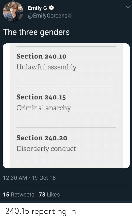 Genders: Emily G  @EmilyGorcenski  The three genders  Section 240.10  Unlawful assembly  Section 240.15  Criminal anarchy  Section 240.20  Disorderly conduct  12:30 AM 19 Oct 18  15 Retweets 73 Likes 240.15 reporting in