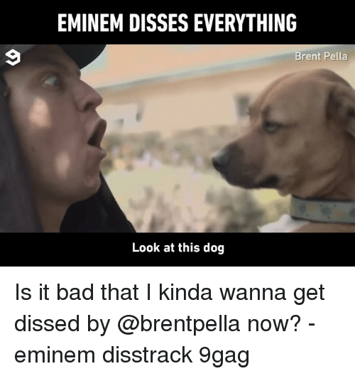 9gag, Bad, and Eminem: EMINEM DISSES EVERYTHING  Brent Pella  Look at this dog Is it bad that I kinda wanna get dissed by @brentpella now? - eminem disstrack 9gag