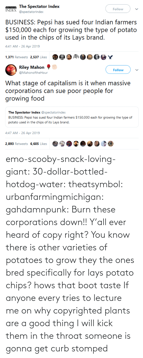 Giant: emo-scooby-snack-loving-giant:  30-dollar-bottled-hotdog-water:  theatsymbol:  urbanfarmingmichigan: gahdamnpunk:  Burn these corporations down!!   Y'all ever heard of copy right? You know there is other varieties of potatoes to grow they the ones bred specifically for lays potato chips?  hows that boot taste   If anyone every tries to lecture me on why copyrighted plants are a good thing I will kick them in the throat    someone is gonna get curb stomped