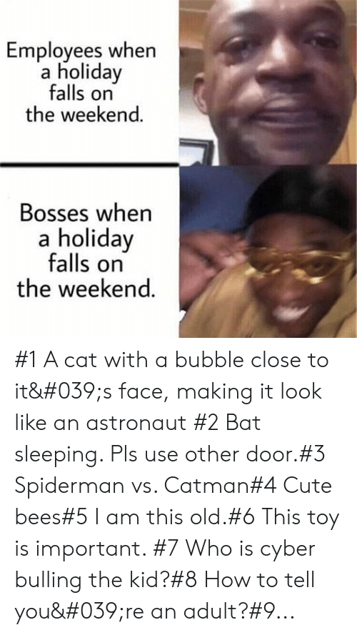Bees: Employees when  a holiday  falls on  the weekend.  Bosses when  a holiday  falls on  the weekend. #1 A cat with a bubble close to it's face, making it look like an astronaut #2 Bat sleeping. Pls use other door.#3 Spiderman vs. Catman#4 Cute bees#5 I am this old.#6 This toy is important. #7 Who is cyber bulling the kid?#8 How to tell you're an adult?#9...