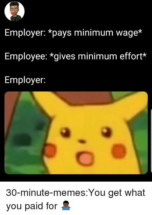 Memes, Target, and Tumblr: Employer: *pays minimum wage*  Employee: *gives minimum effort*  Employer: 30-minute-memes:You get what you paid for 🤷🏿‍♂️