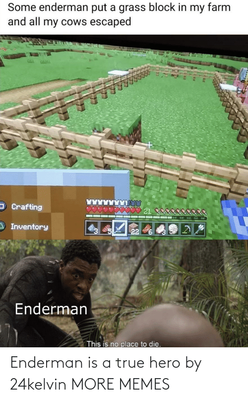dank: Enderman is a true hero by 24kelvin MORE MEMES