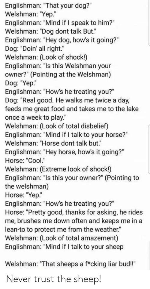 """Food, Lean, and Cool: Englishman: """"That your dog?""""  Welshman: """"Yep.""""  Englishman: """"Mind if I speak to him?""""  Welshman: """"Dog dont talk But.""""  Englishman: """"Hey dog, how's it going?""""  Dog: """"Doin' all right.""""  Welshman: (Look of shock!)  Englishman: """"ls this Welshman your  owner?"""" (Pointing at the Welshman)  Dog: """"Yep.  Englishman: """"How's he treating you?""""  Dog: """"Real good. He walks me twice a day,  feeds me great food and takes me to the lake  once a week to play.  Welshman: (Look of total disbelief)  Englishman: """"Mind if I talk to your horse?""""  Welshman: """"Horse dont talk but.""""  Englishman: """"Hey horse, how's it going?""""  Horse: """"Cool.""""  Welshman: (Extreme look of shock!)  Englishman: """"ls this your owner?"""" (Pointing to  the welshman)  Horse: """"Yep""""  Englishman: """"How's he treating you?""""  Horse: """"Pretty good, thanks for asking, he rides  me, brushes me down often and keeps me in a  lean-to to protect me from the weather.  Welshman: (Look of total amazement)  Englishman: """"Mind if I talk to your sheep  Welshman: """"That sheeps a f*cking liar bud!"""" Never trust the sheep!"""