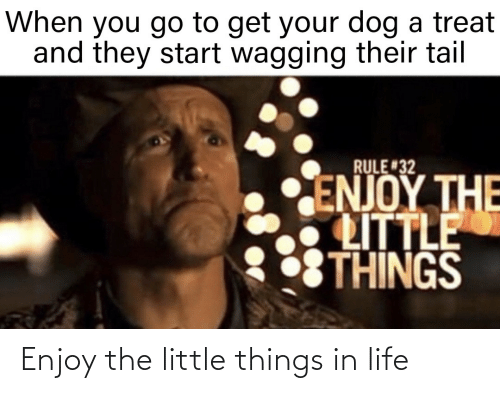 things: Enjoy the little things in life