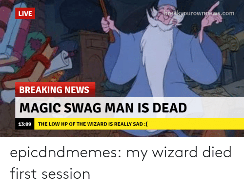 first: epicdndmemes:  my wizard died first session