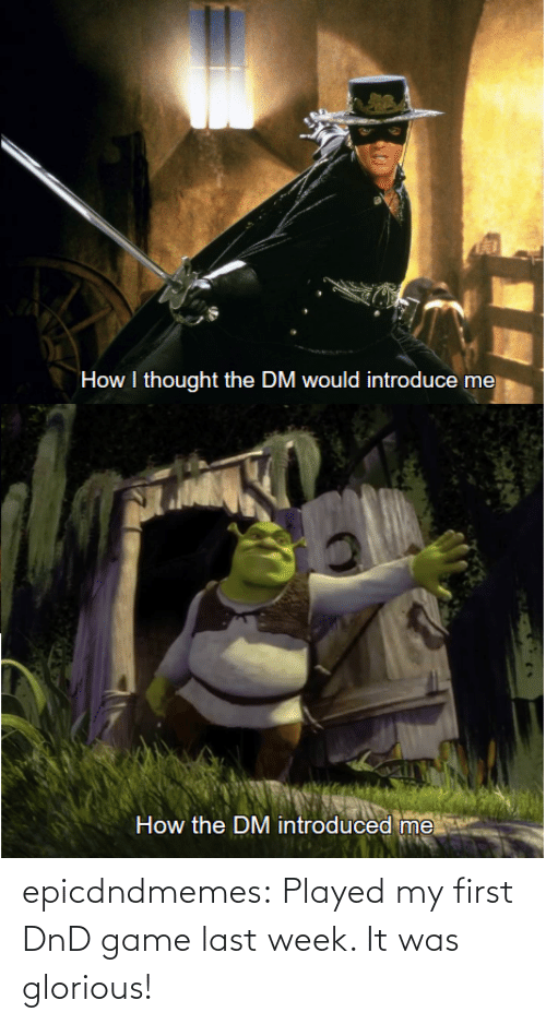 My First: epicdndmemes:  Played my first DnD game last week. It was glorious!