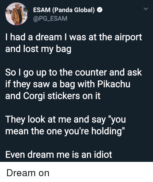 """A Dream, Corgi, and Pikachu: ESAM (Panda Global)  @PG_ESAM  I had a dream I was at the airport  and lost my bag  So I go up to the counter and ask  if they saw a bag with Pikachu  and Corgi stickers on it  They look at me and say """"you  mean the one you're holding""""  Even dream me is an idiot Dream on"""