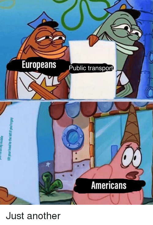 Another, Public, and Americans: Europeans Public transpa  Americans Just another