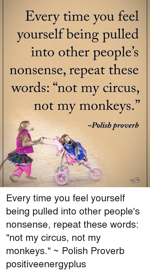 25 Best Memes About Not My Circus Not My Circus Memes