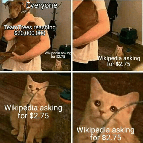 Reaching: Everyone  TeamTrees reaching  $20,000,000  Wikipedia asking  for $2.75  Wikipedia asking  for $2.75  Wikipedia asking  for $2.75  Wikipedia asking  for $2.75