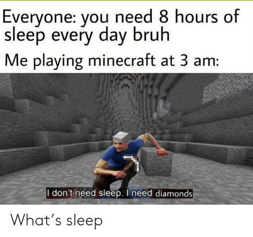 Bruh, Minecraft, and Dank Memes: Everyone: you need 8 hours of  sleep every day bruh  Me playing minecraft at 3 am:  I don't need sleep. I need diamonds What's sleep
