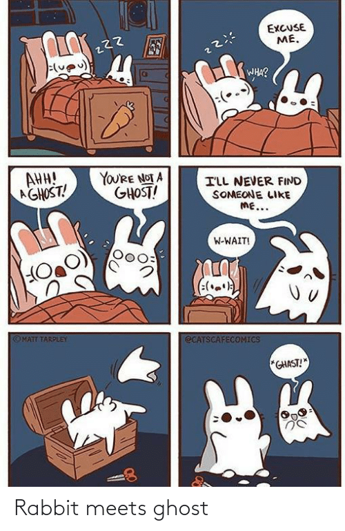 Meets: EXCUSE  ME.  WHA?  AHH!  AGHOST!  YOU'RE NOT A  GHOST!  ILL NEVER FIND  SOMEONE LIKE  ME...  W-WAIT!  (:(.)  OMATT TARPLEY  ECATSCAFECOMICS  *GHAST! Rabbit meets ghost